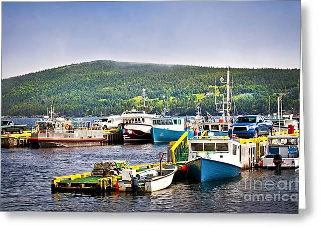 Docked Boat Greeting Cards - Fishing boats in Newfoundland Greeting Card by Elena Elisseeva