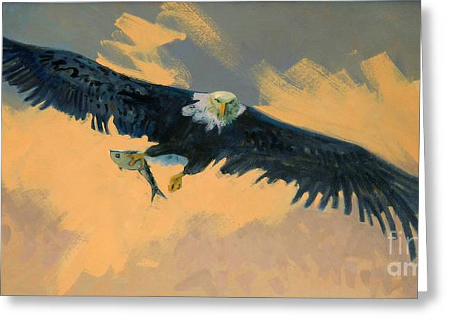 Preditor Greeting Cards - Fishing Eagle Greeting Card by Donald Maier