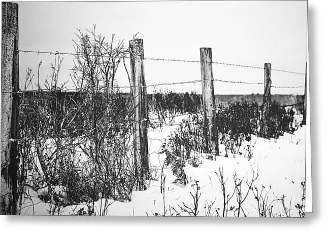 Alberta Prints Greeting Cards - Five Poles Greeting Card by Jerry Cordeiro