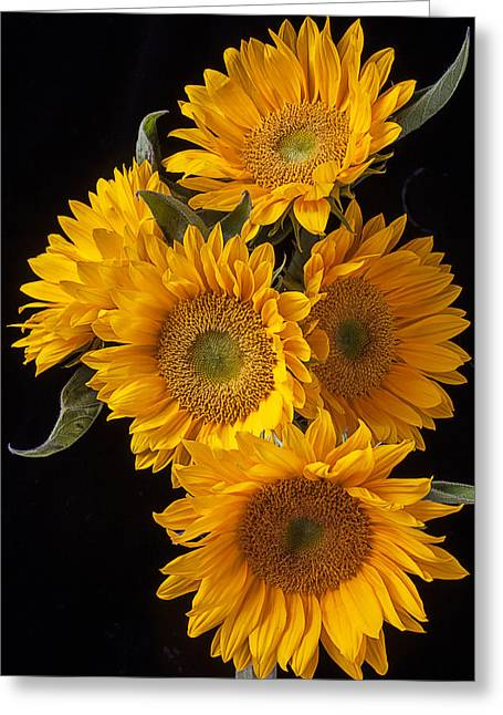 Flora Greeting Cards - Five sunflowers Greeting Card by Garry Gay