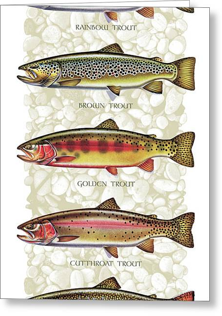 Animals Paintings Greeting Cards - Five Trout Panel Greeting Card by JQ Licensing