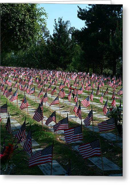 Forgotten Vet Greeting Cards - Flags of the Fallen Greeting Card by Lon Casler Bixby