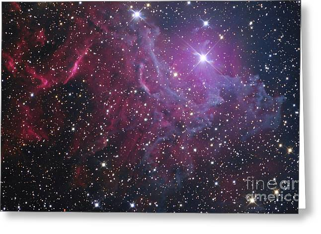 Twinkle Greeting Cards - Flaming Star Nebula In Auriga Greeting Card by Don Goldman