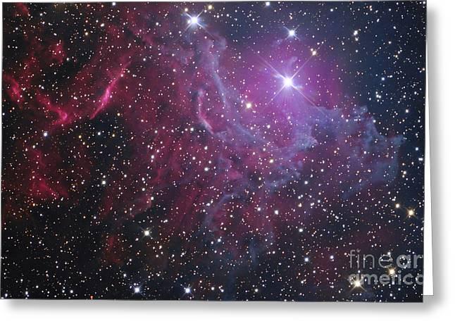 Illuminate Greeting Cards - Flaming Star Nebula In Auriga Greeting Card by Don Goldman