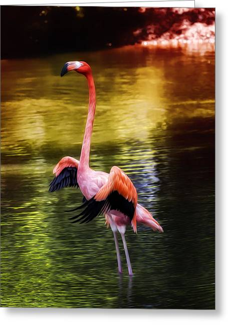 Fiend Greeting Cards - Flamingo Flow Greeting Card by Bill Tiepelman