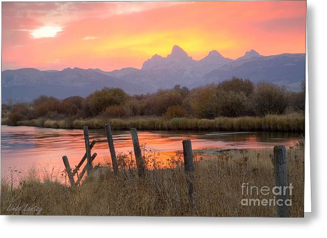 Idaho Photographs Greeting Cards - Fleeting Moments Greeting Card by Idaho Scenic Images Linda Lantzy