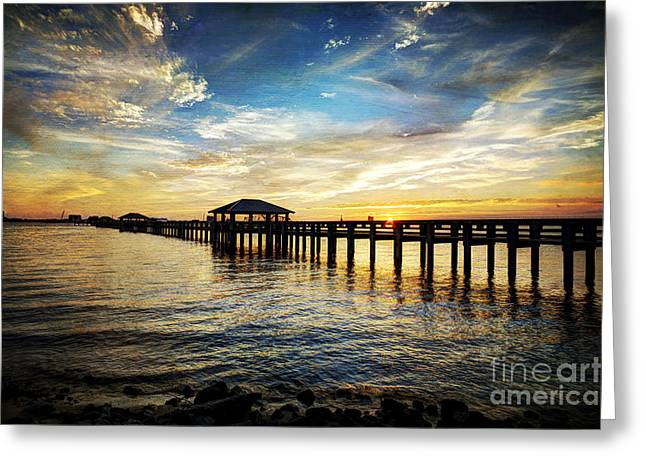 Mississippi Photographs Greeting Cards - Fleeting Moments Greeting Card by Joan McCool