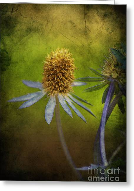 Blau Greeting Cards - Fleur dautomne Greeting Card by Angela Doelling AD DESIGN Photo and PhotoArt