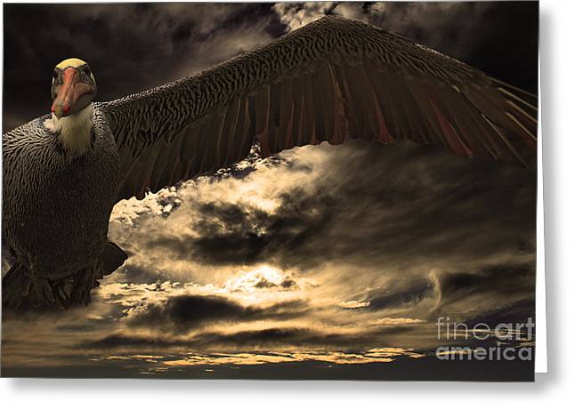 Half Moon Bay Greeting Cards - Flight of The Brown Pelican Greeting Card by Wingsdomain Art and Photography