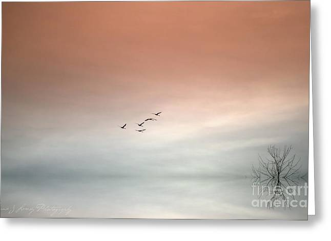 Swan Fantasy Art Greeting Cards - Flight of the Swans Greeting Card by Annie Lemay