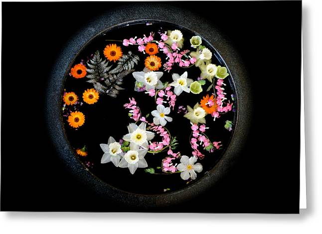 Floating Flowers Greeting Cards - Floating Bouquet Greeting Card by Don Schroder