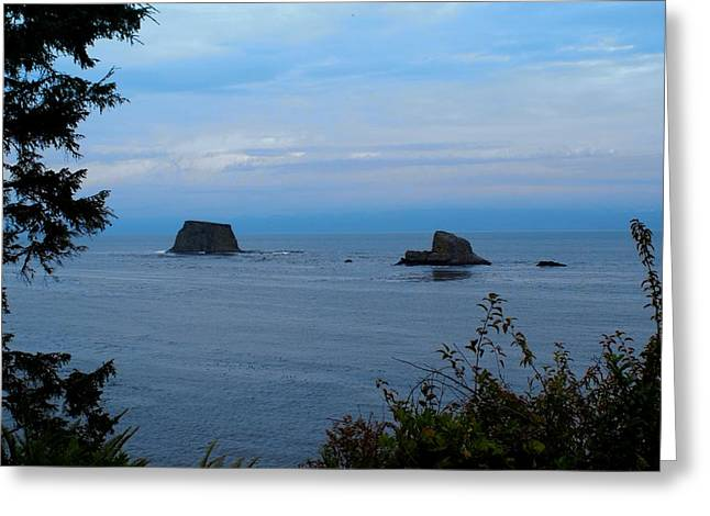 Cape Flattery Greeting Cards - Floating Rocks Greeting Card by Christy Leigh