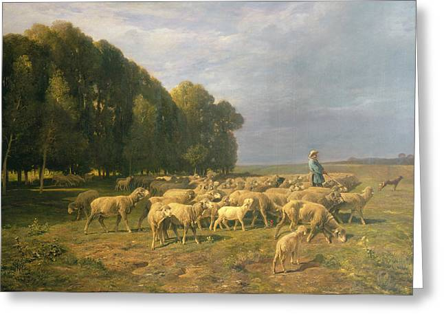 Flock Greeting Cards - Flock of Sheep in a Landscape Greeting Card by Charles Emile Jacque