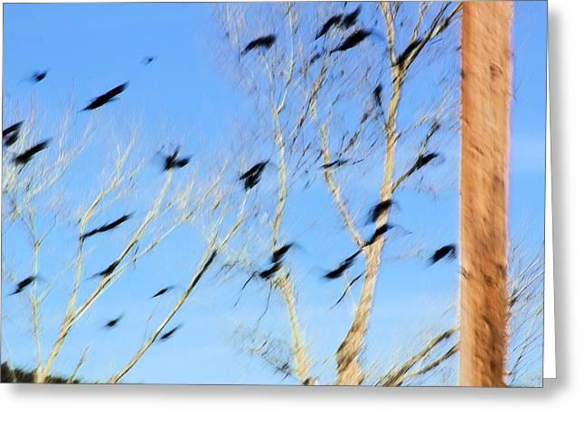 Flocking Crows Greeting Card by Viktor Savchenko