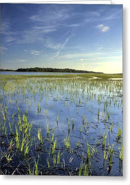 Charleston Greeting Cards - Flood Tide  Greeting Card by Dustin K Ryan
