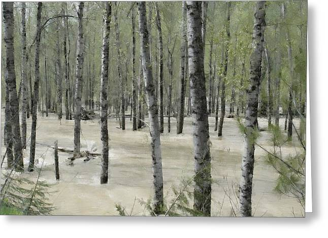 Flooding Digital Art Greeting Cards - Flooding River Greeting Card by One Rude Dawg Orcutt