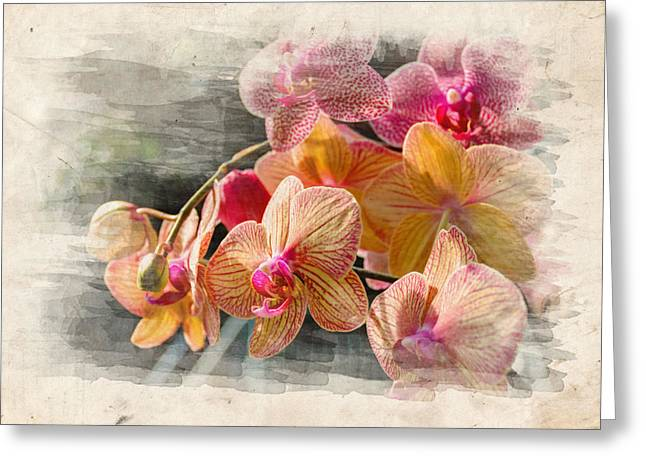 Blooms Greeting Cards - Floral Beauty Greeting Card by Ricky Barnard