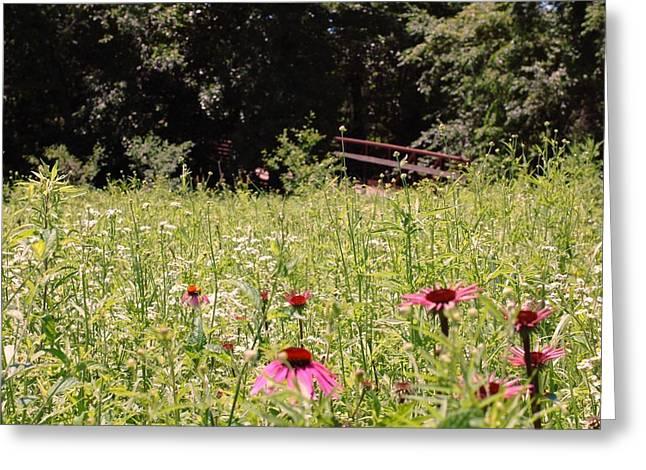 Floral Bridge Greeting Card by Jame Hayes