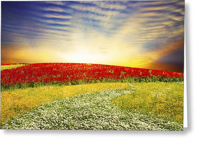Spring Scenes Digital Greeting Cards - Floral Field On Sunset Greeting Card by Setsiri Silapasuwanchai