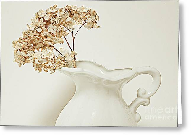 Dried Hydrangeas Greeting Cards - Floral Greeting Card by HD Connelly
