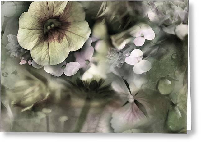 Wet Petals Greeting Cards - Floral Montage Greeting Card by Bonnie Bruno