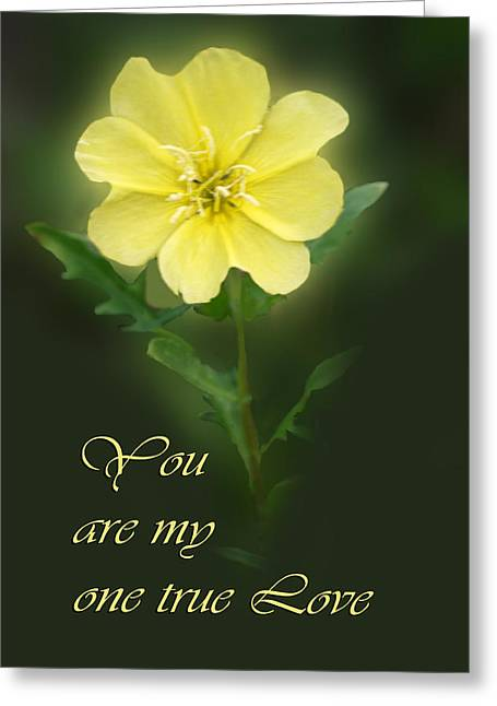 Primroses Greeting Cards - Floral My One True love Greeting Card by Linda Phelps