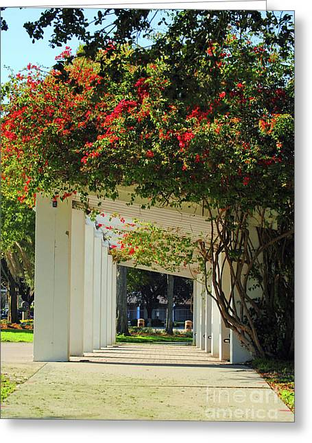 St Petersburg Florida Greeting Cards - Floral or Art Greeting Card by Jost Houk