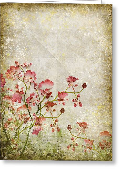 Border Photographs Greeting Cards - Floral Pattern Greeting Card by Setsiri Silapasuwanchai
