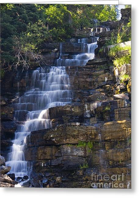Scotts Scapes Greeting Cards - Florence Falls Greeting Card by Scotts Scapes