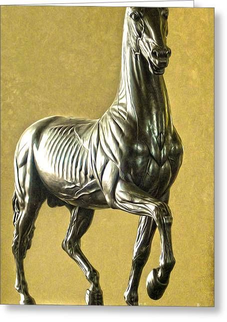 Gregory Dyer Greeting Cards - Florence Italy - Anatomical Horse Statue - Medici Palace Greeting Card by Gregory Dyer