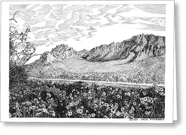 Pen And Ink Framed Prints Greeting Cards - Florida Mountains and Poppies Greeting Card by Jack Pumphrey