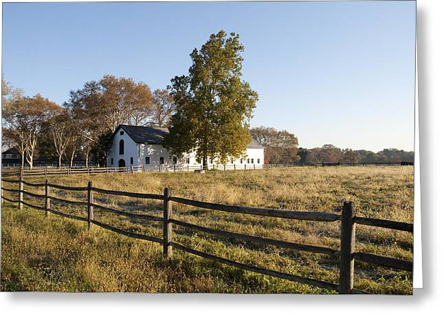 Erdenheim Farm Greeting Cards - Flourtown Morning Greeting Card by Bill Cannon