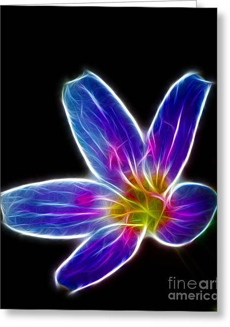Botony Greeting Cards - Flower - electric blue - abstract Greeting Card by Paul Ward