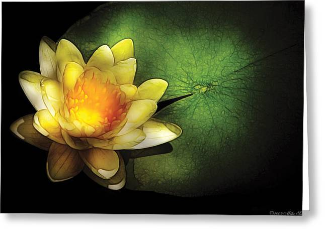 Nymphaea Greeting Cards - Flower - Lotus - Nymphaea  Chromatella - Yellow Lily Greeting Card by Mike Savad