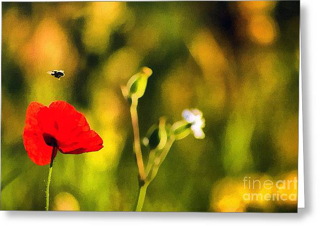 Sweating Paintings Greeting Cards - Flower and bee Greeting Card by Odon Czintos
