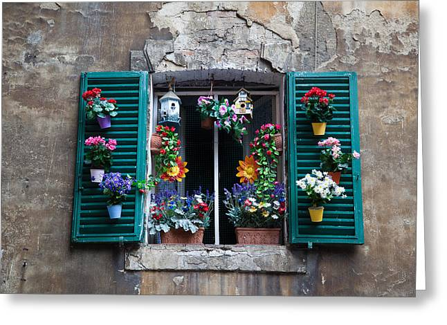 Sienna Italy Greeting Cards - Flower box Greeting Card by Zack Stern