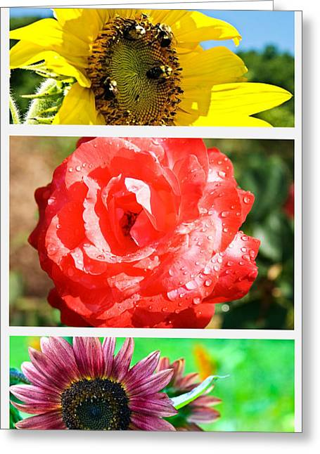 Susan Leggett Greeting Cards - Flower Collage Part One Greeting Card by Susan Leggett