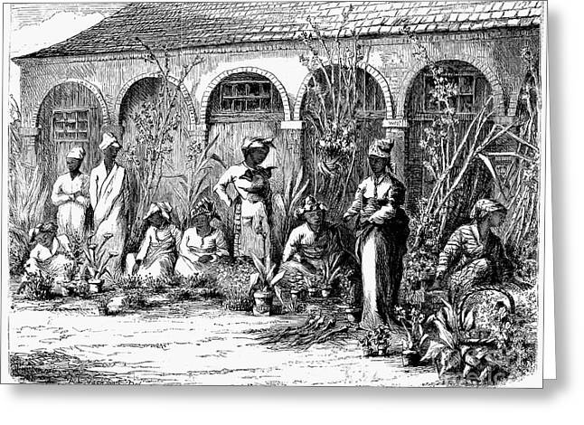 C.1870 Greeting Cards - Flower Market, 1870 Greeting Card by Granger