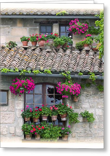 Stone House Greeting Cards - Flower Pots In Windows In Arles Greeting Card by Carson Ganci