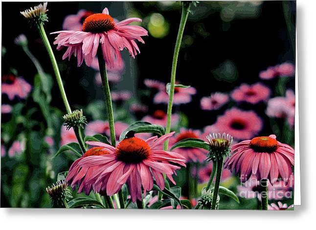 Decour Greeting Cards - Flower Power Greeting Card by Tom Prendergast