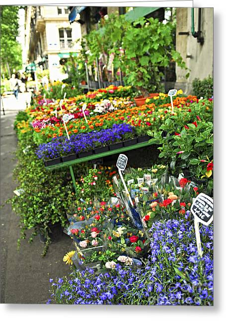 European Flower Shop Greeting Cards - Flower stand in Paris Greeting Card by Elena Elisseeva