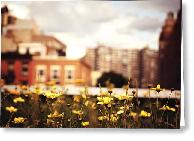 Flowers - High Line Park - New York City Greeting Card by Vivienne Gucwa