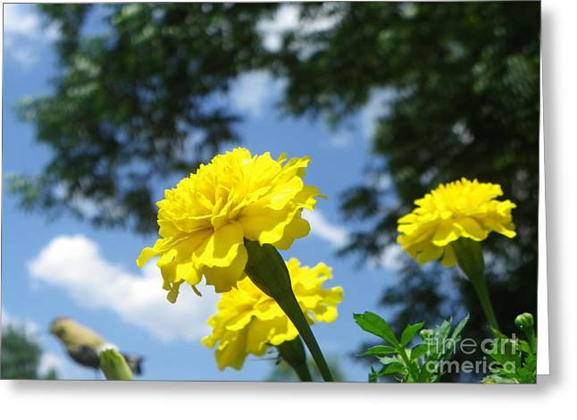 Not Think Greeting Cards - Flowers Greeting Card by Bobby Hammerstone