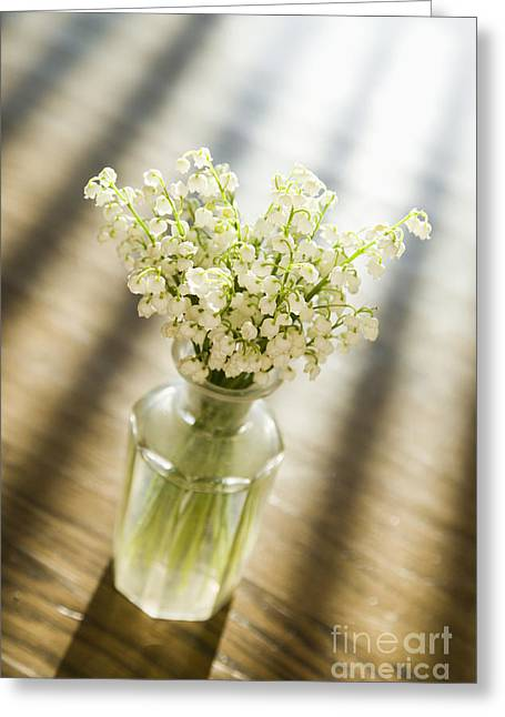 Glass Vase Greeting Cards - Flowers in Vase Greeting Card by Andersen Ross