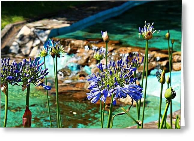 Jenny Senra Pampin Greeting Cards - Flowers Greeting Card by Jenny Senra Pampin
