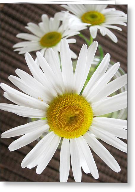 Stamen Greeting Cards - Flowers Greeting Card by Les Cunliffe
