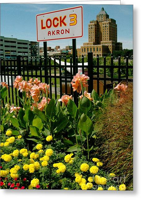 Akron Greeting Cards - Flowerscape  Greeting Card by Trish Hale