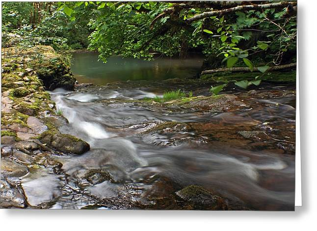 White Digital Greeting Cards - Flowing Solitude Greeting Card by Tyra  OBryant