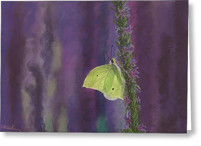 Butterflies Pastels Greeting Cards - Flutterby Greeting Card by Jackie Novak