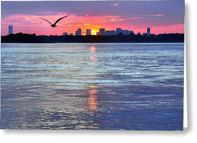 Hull Ma Greeting Cards - Fly By Night Greeting Card by Joanne Brown